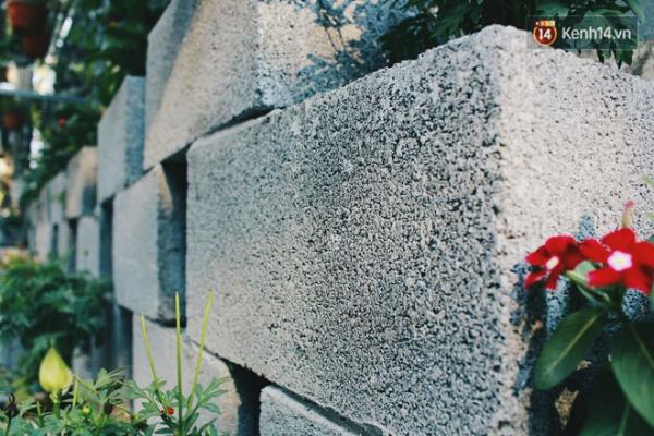 Khu vườn chủ yếu được xây bằng gạch sinh học.