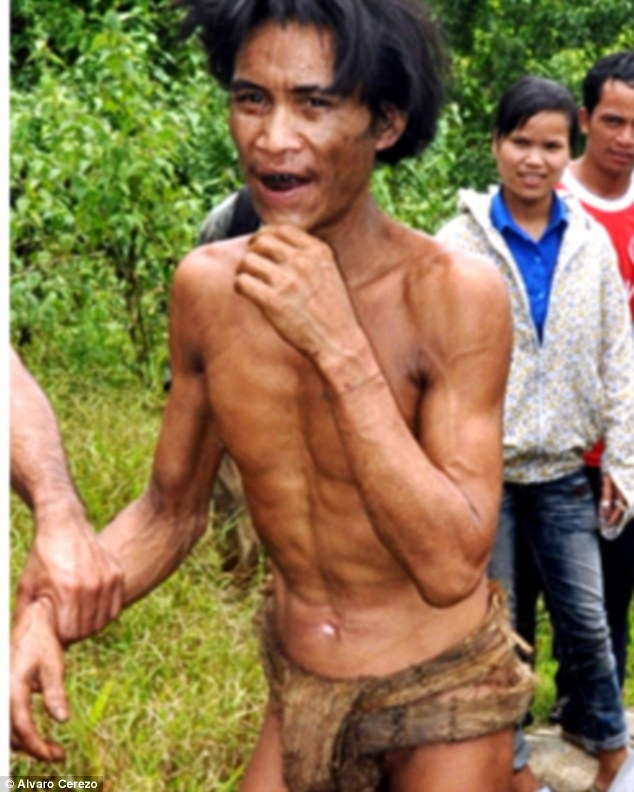 Vì mục đích an toàn, hai cha con anh Lang luôn xây dựng nơi trú ngụ của mình trên một cái cây vững chãi.
