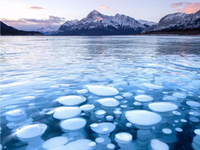 Bức ảnh này được chụp tại hồ Abraham- Alberta. Khí metan từ các thực vật chết bốc lên mặt nước và bị chặn lại dưới lớp băng đá vô tình tạo nên những quả bong bóng băng này. Tuy vậy, ít ai có thể chứng kiến cảnh tượng tuyệt đẹp này bởi chúng sẽ nhanh chóng bị phá hủy bởi không khí nóng và băng tuyết. Tôi đã đợi rất nhiều năm trước khi bắt được khoảnh khắc tinh khiết này của mặt hồ Abraham.