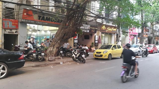 Salon tuy ẩn mình phía sau cây cổ thụ nhưng lúc nào cũng rất đông khách vì đều là khách quen.