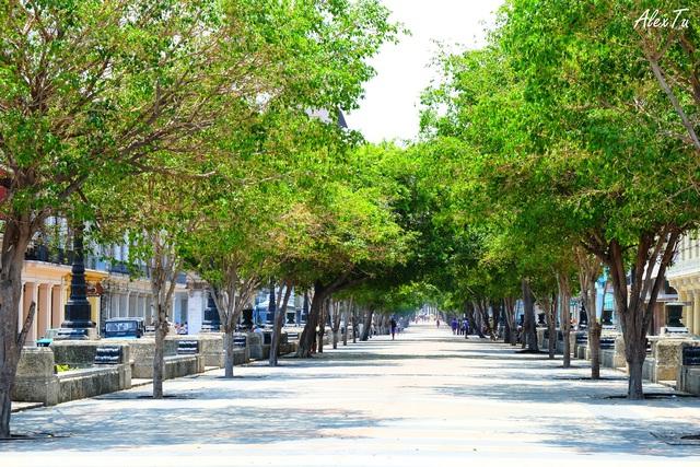 Con đường Paseo Del Prado, nối công viên trung tâm (Central Park) với con đường dọc bờ biển trung tâm Havana (Malécon)