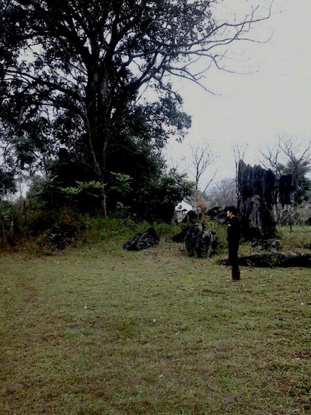 Bãi cỏ và những mỏm đá mọc tự nhiên nơi đoàn phim chọn làm bối cảnh phim tại hồ Yên Phú được dọn sạch rác thải trước khi đoàn phim rời đi - Ảnh: Q.Nam