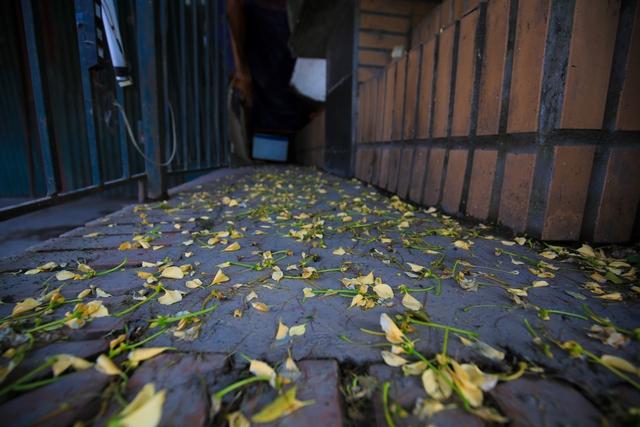 Do tồn tại hàng trăm năm nay nên cây bún cổ thụ được coi như cây Đa của làng Đình Thôn. Đã từ lâu, màu hoa bún đầu tháng tư đã trở thành hình ảnh đặc trưng mà thu hút của người dân nơi đây.