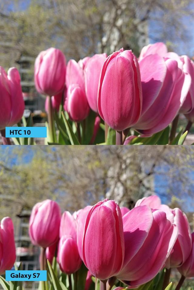 Những bức ảnh được chụp bởi HTC 10 và Samsung Galaxy S7.