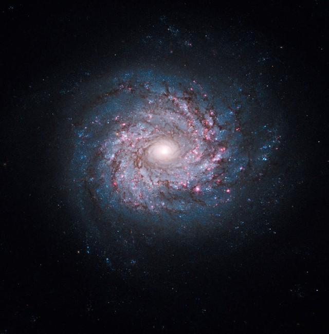 Nhiều giả thuyết cho rằng có vô số các vũ trụ đang tồn tại song song với chúng ta.