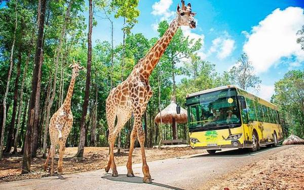 Vinpearl Safari Hạ Long rộng hơn 1.100ha được duyệt quy hoạch 1/500