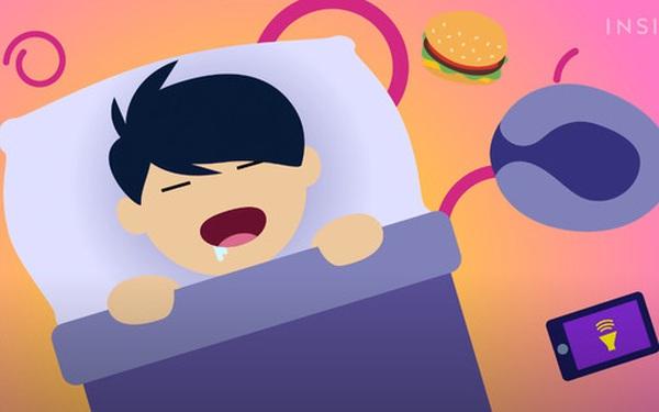 Điều gì sẽ xảy ra, nếu bạn ngủ một giấc dài 365 ngày?