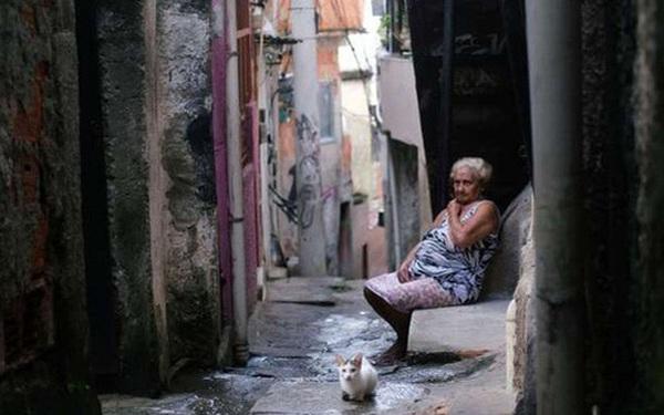 Đến cả các băng đảng xã hội đen ở Brazil cũng xách loa đi tuyên truyền người dân hạn chế ra đường giữa dịch Covid-19