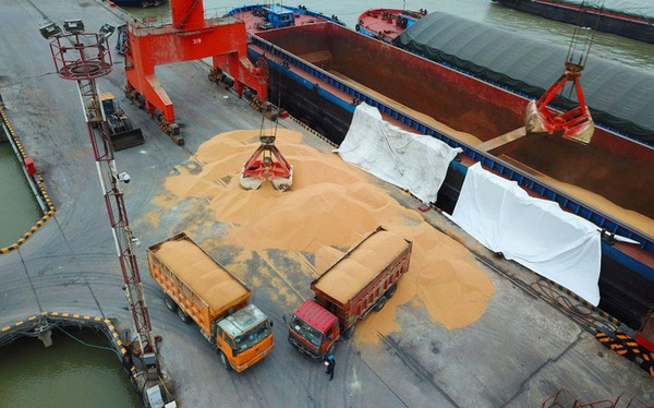 Trung Quốc tuyên bố tạm ngừng mua nông sản của Mỹ, thỏa thuận thương mại có nguy cơ đổ vỡ