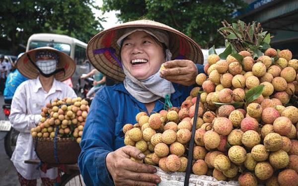 Giải cứu nông sản Việt thời 4.0: Vải thiều Lục Ngạn lên MoMo, giá chỉ 19.600 đồng/kg, sau 8 tiếng 'giải cứu' được 8 tấn, có khách mua tới 90kg