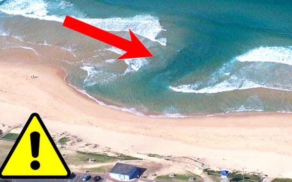 Cảnh báo về mối nguy hiểm mới xuất hiện ở các bãi biển Việt Nam có thể gây hại đến tính mạng của du khách mùa hè này: Không thể coi nhẹ!