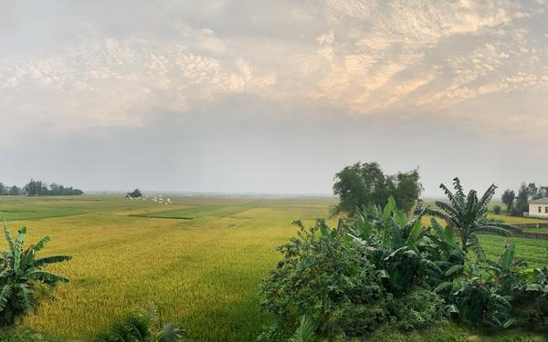 Con trai là KTS xây nhà 2 tầng nhìn thẳng ra cánh đồng lúa với thiết kế tiện dụng cho bố mẹ già ở Hà Tĩnh