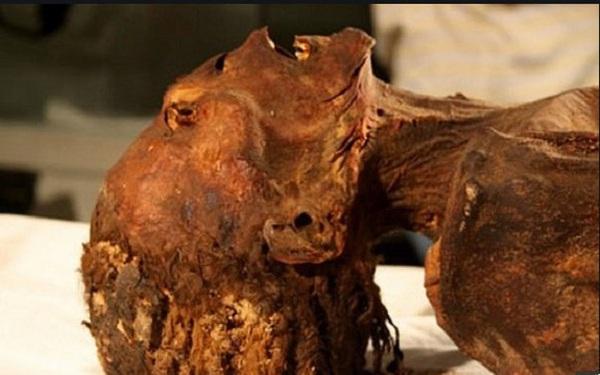 """Vén màn bí ẩn xác ướp """"công chúa gào thét"""" trong mộ cổ Ai Cập 3000 năm tuổi"""