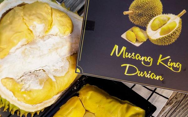 """Tất tần tật thông tin về loại sầu riêng ngon nhất thế giới bán tại Việt Nam với giá 1,6 triệu/kg, dù đắt vẫn được giới sành ăn """"đổ mua"""""""