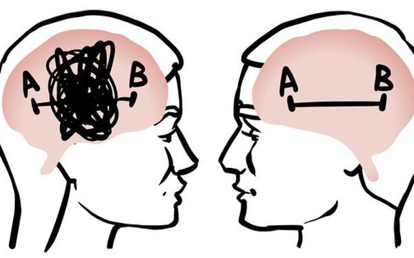 Rốt cuộc não bộ nam giới và phụ nữ có gì khác nhau, và tại sao lại có sự khác biệt đó?