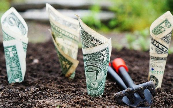Tiền bạc: Một nửa là thiên thần, một nửa là ác quỷ và triết lý ai cũng nên biết để cuộc sống bớt phiền muộn