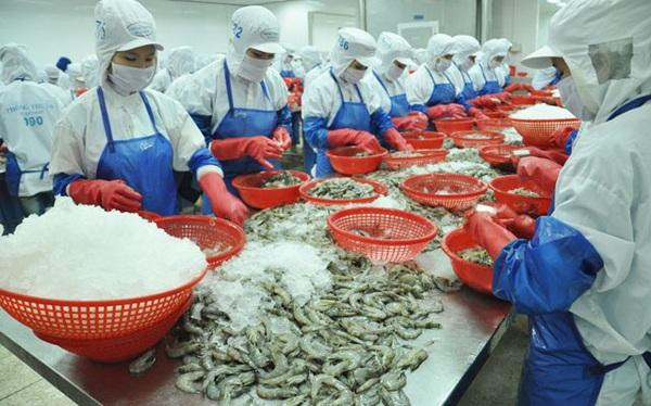 Việt Nam xuất khẩu lô tôm đầu tiên sang EU hưởng thuế 0% từ EVFTA