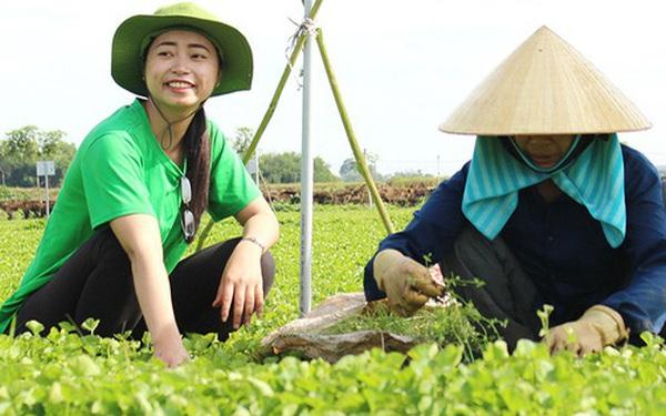 Founder Nguyễn Ngọc Hương kể về hành trình mang rau má Việt bán cho cả châu Âu: Chuẩn bị vùng trồng tốt, làm sản phẩm chất lượng thế giới và chờ thời cơ