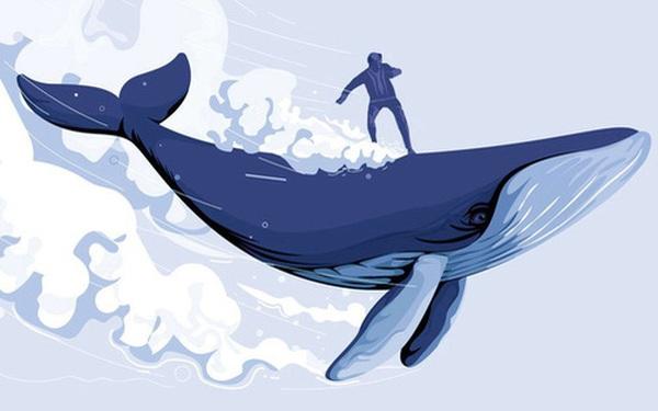 Nhà đầu tư lớn nhỏ rót hàng tỷ USD để 'thuận' theo lý thuyết 'cá voi Nasdaq', giới phân tích Phố Wall lý giải như thế nào?