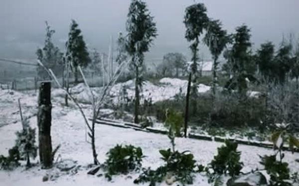 Những khoảnh khắc băng tuyết phủ trắng Y Tý - Sapa, hoa đào nở đóng băng đẹp như cổ tích là dịp vô cùng hiếm hoi để du lịch vào thời điểm này!