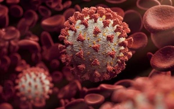 Biến thể mới của SARS-CoV-2 được dự đoán sẽ là chủng vượt trội ở Mỹ sau 5 tuần nữa