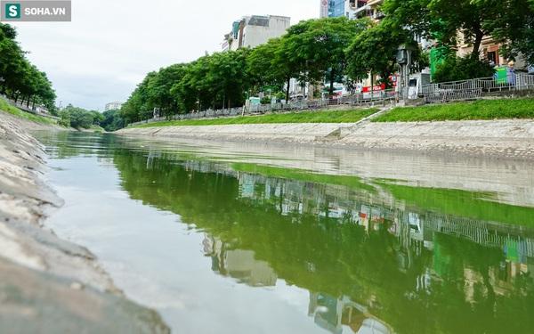 [ẢNH] Cận cảnh dòng nước xanh ngắt hiếm thấy tại sông Tô Lịch, cá bơi 'nhộn nhịp' hàng đàn