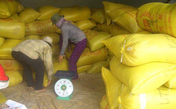 Vì sao xuất khẩu gạo Việt Nam bất ngờ giảm mạnh?