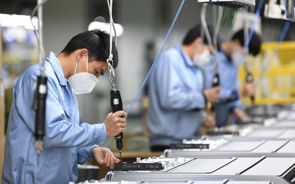 Doanh nghiệp thành lập mới tăng cao nhất trong 5 năm, đặc biệt trong ngành bất động sản