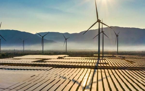 Năm kỷ lục ngành năng lượng tái tạo toàn cầu: Việt Nam đạt được những gì?