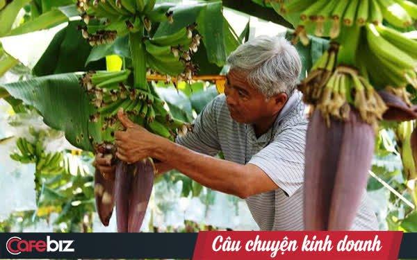 """Út Huy - Từ cậu bé 14 tuổi đi cày thuê thành """"Vua chuối"""": Hơn 20 lần khởi nghiệp với đủ cây trồng vật nuôi, không đếm hết số lần thất bại"""