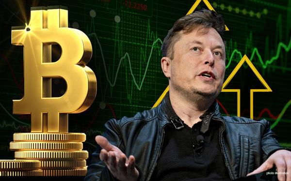 Elon Musk khiến cộng đồng tiền số hoang mang, Bitcoin từ chỉ số 'tham lam' rơi thẳng về mức 'đáng sợ'