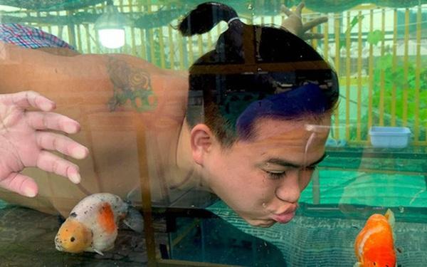 Nghỉ học từ lớp 11 để nuôi cá vàng trên sân thượng, chàng trai khoe doanh thu 100-200 triệu đồng/tháng