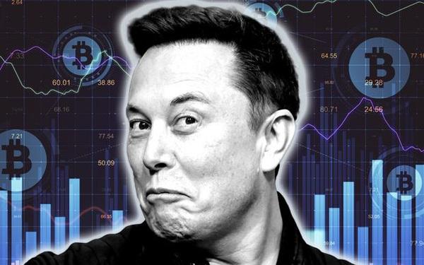 Elon Musk có động thái cứu thị trường, tweet khen ngợi 'Master of coin'