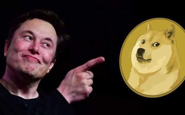 'Trò đùa' Dogecoin tăng hơn 12.000%, bạn sẽ có bao nhiêu tiền nếu đổ 1.000 USD vào đây từ đầu năm?