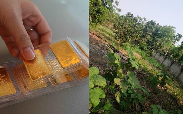 Mỗi tháng tiết kiệm ít nhất 1 chỉ vàng, mẹ ở Hà Nội sau gần 10 năm đã có 2 mảnh đất nền ưng ý