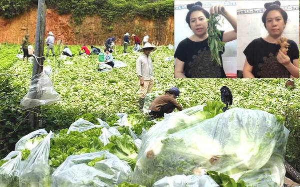 """Nông dân tặng Sài Gòn cả vườn rau, sao doanh nghiệp lớn sá gì không chịu hi sinh vài đồng lợi nhuận: Một """"miếng"""" bình ổn giá thời dịch hơn cả """"gói"""" khuyến mãi ngày thường!"""