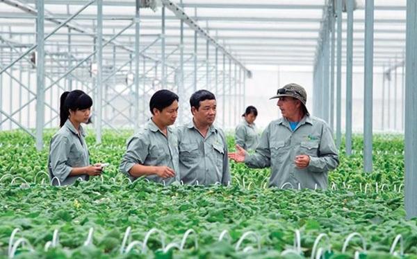 Navigos Search: Tuyển dụng ngân hàng, chứng khoán tiếp tục cao điểm, ứng viên mảng nông nghiệp cần giỏi tiếng Anh