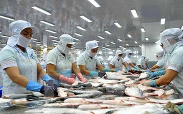 Mất 2 năm doanh nghiệp thủy sản mới có thể phục hồi sản xuất?