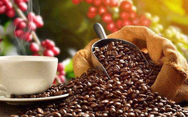 """Nước Mỹ và giấc mơ """"hoang đường""""… trở thành nước trồng cà phê lớn trên thế giới"""