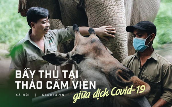 """Chuyện 34 nhân viên ở lại Thảo Cầm Viên chăm sóc bầy thú giữa dịch Covid-19: """"Phải cố gắng không để thú nuôi bị đói"""""""