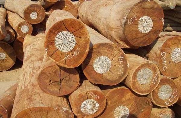 Ngành gỗ và bài toán 'xuất 3 – nhập 1'