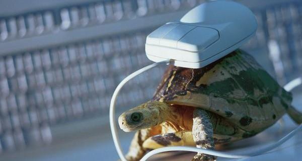 Sốc: 2,1 triệu người Mỹ vẫn đang lướt Internet bằng dial-up tốc độ 'rùa bò'