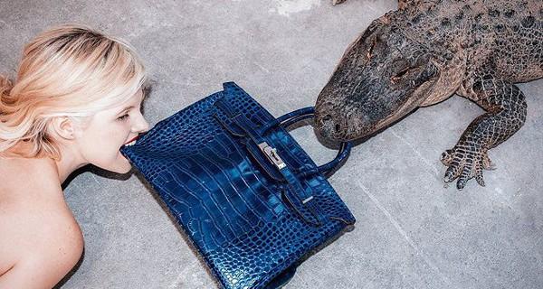 """Sự thật """"đẫm máu"""" và những lời nói dối ẩn sau chiếc túi Hermès"""