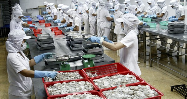 Người Nhật chỉ mặt điểm tên loạt vấn đề của nông nghiệp Việt Nam