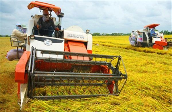 """Nông nghiệp Việt phải cải tiến từ """"gốc"""" đến """"ngọn"""""""