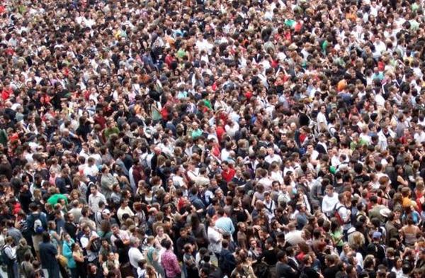 Trí tuệ của đám đông