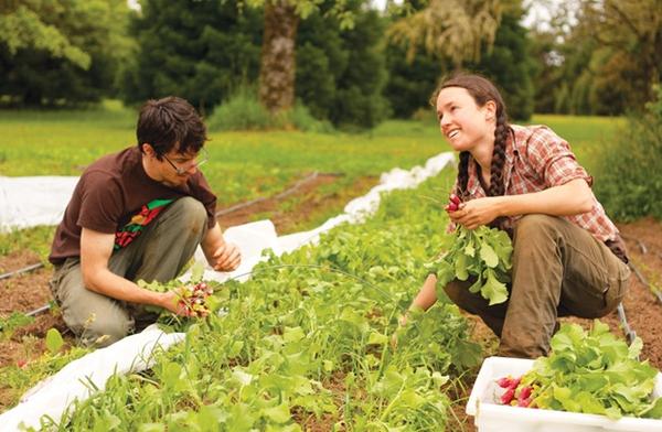 Học nông nghiệp có cần du học?