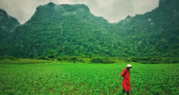Việt Nam hùng vĩ, xanh mượt trong cảnh quay Kong: Skull Island