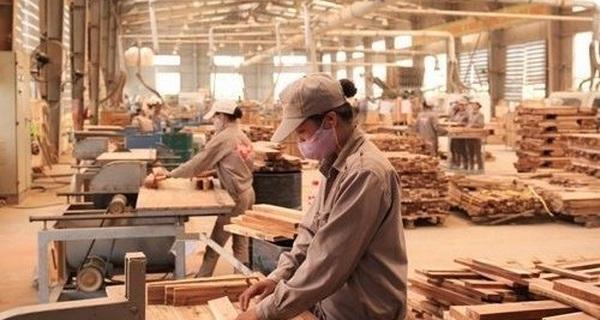 Rủi ro tiềm ẩn khi xuất khẩu gỗ sang Mỹ, EU và Úc