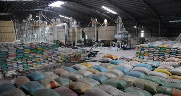 Xuất khẩu gạo trong 6 tháng đầu năm dự kiến tăng 12%